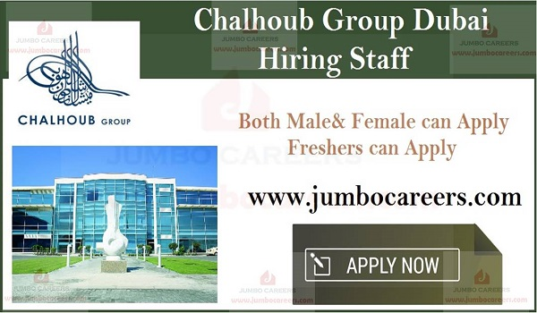 New job opportunities in UAE, Current Freshers job sin UAE,