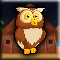 Play Games2Jolly Tawny Owl Esc…