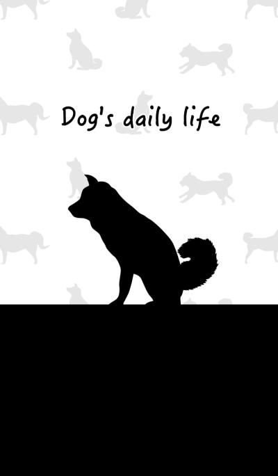 Dog's daily life!
