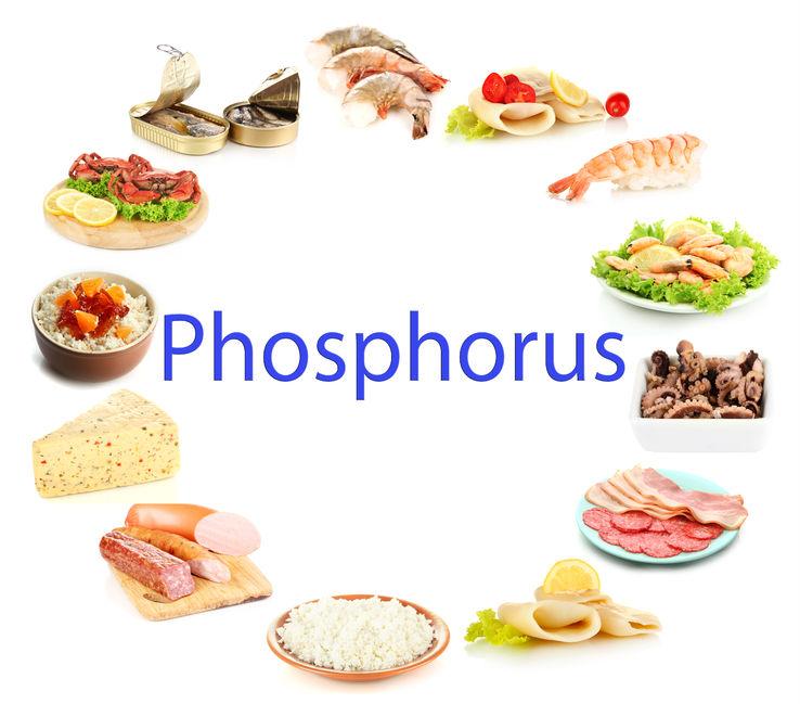 Kegunaan Fungsi Fosfor Bagi Tubuh Manusia
