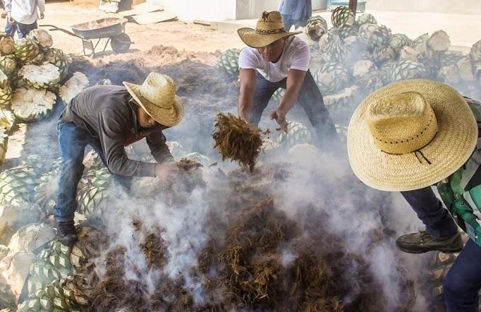 Feria Internacional del Mezcal Oaxaca 2020