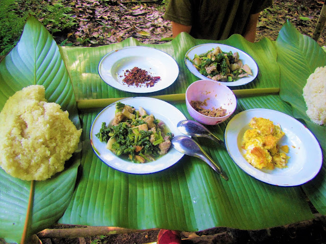 chicken greens lunch nam et phou louey national protected area laos
