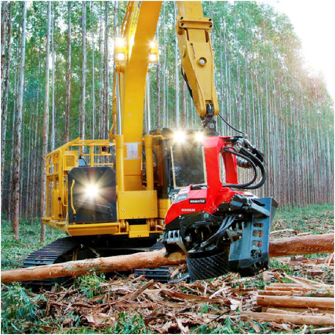 Empresa oferece Curso de Colheita Florestal em Mogi Guaçu
