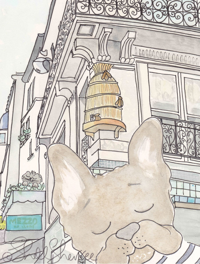 Bentley French Bulldog Paris Beehive Photobomb illustration  © Shell Sherree all rights reserved