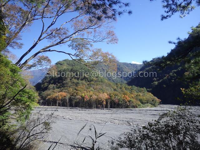 Taiwan Aowanda (奧萬大) maple season - Maple Forest