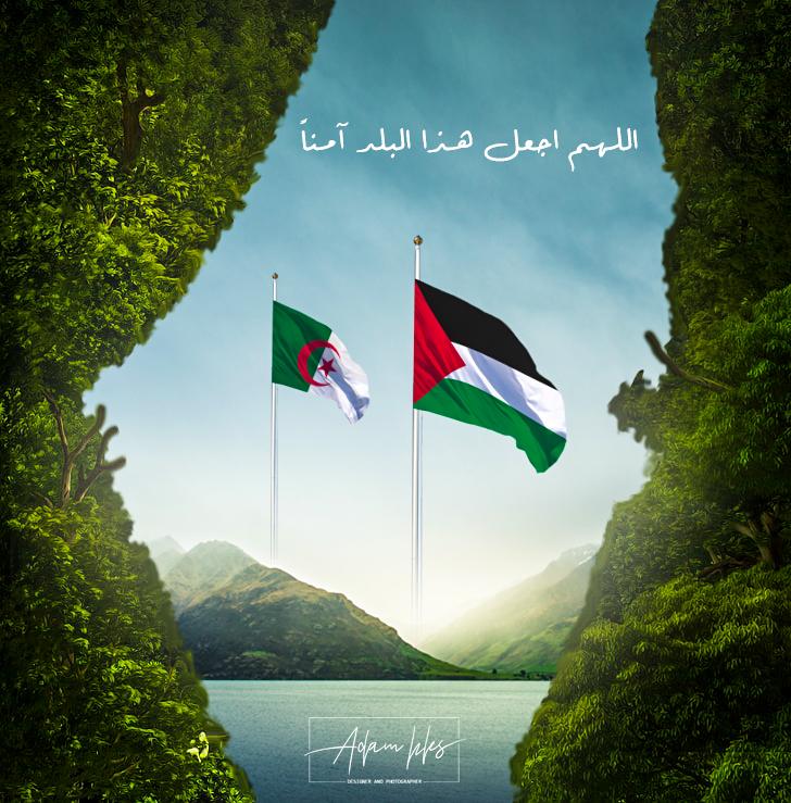 علم فلسطين والجزائر