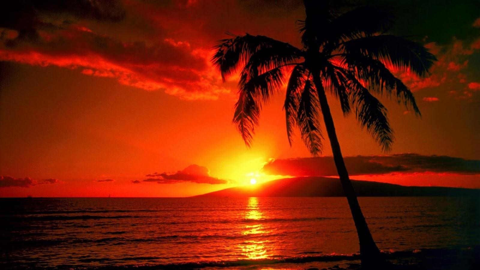 WEATHER FORECAST FOR HONOLULU, HAWAII, USA ! - Weather