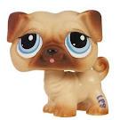 Littlest Pet Shop Pet Pairs Pug (#1313) Pet