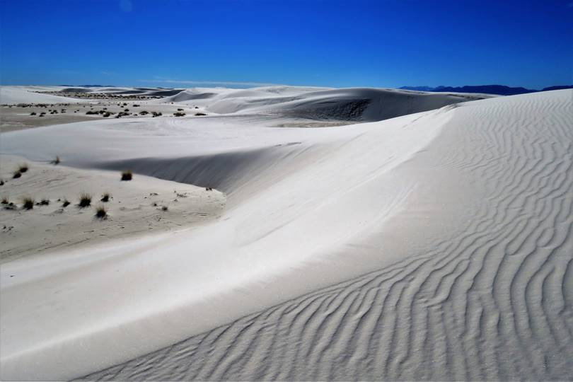 Chihuahuan Desert  | The  Land of Massive Gypsum White Sand Dunes