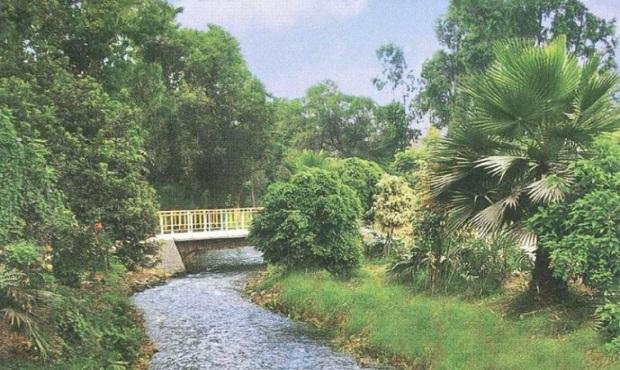Alcalde de Miraflores plantea construcción de parque lineal en canal de Surco