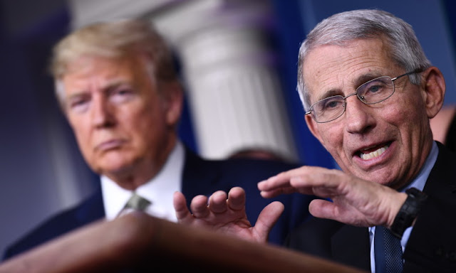 Dr. Anthony Fauci, chief White House medical adviser