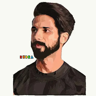 Shahid Kapoor, Bollywood