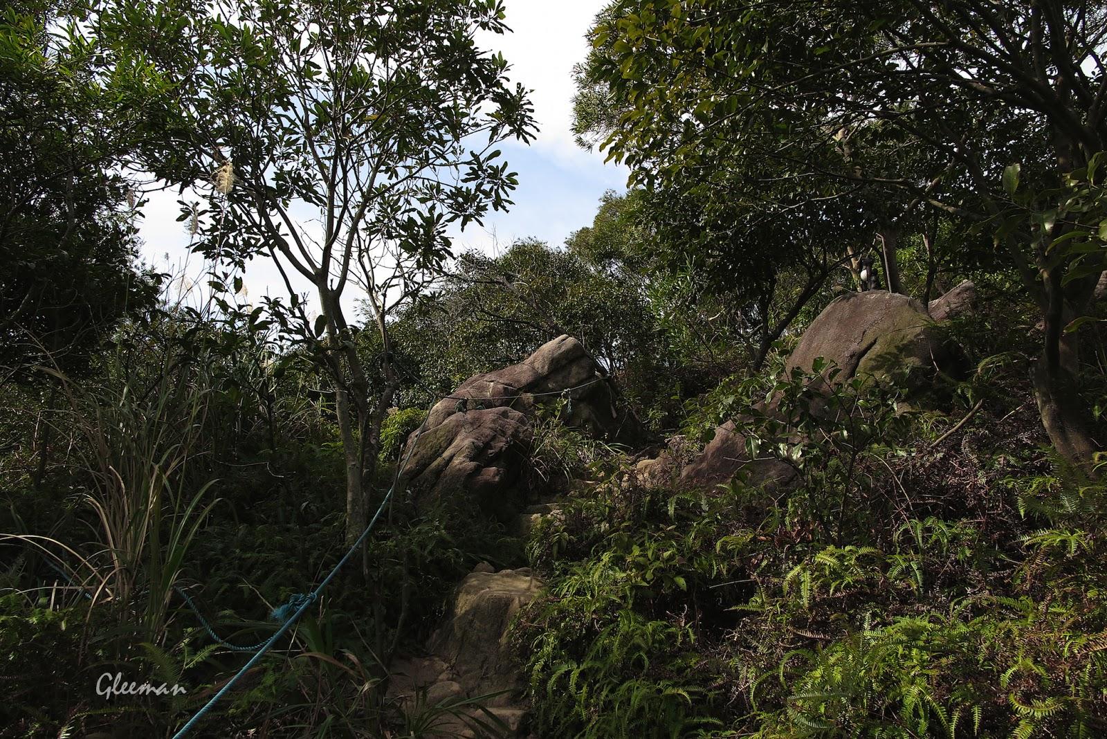 雞南山上山稜線