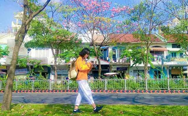 Có một Sài Gòn mộng mơ mùa hoa kèn hồng nở rộ - Ảnh 10
