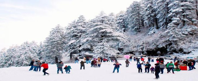 Shimla Attraction - Kufri