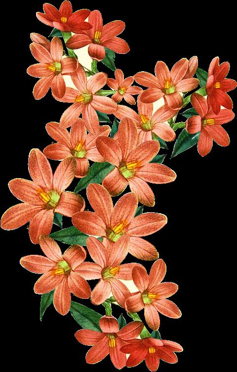 Textile design Flower Patch 2331