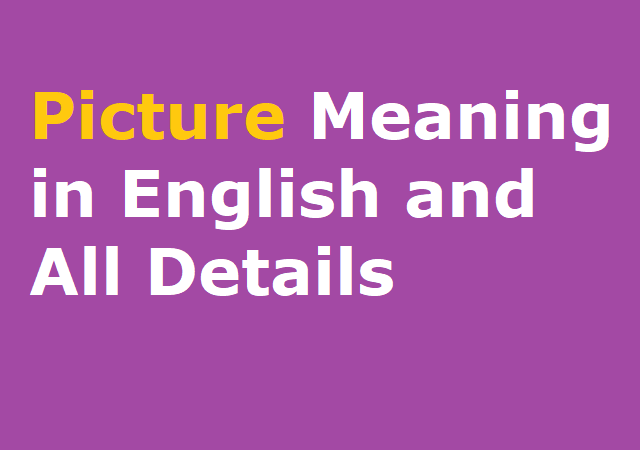 Picture Meaning in English and All Details