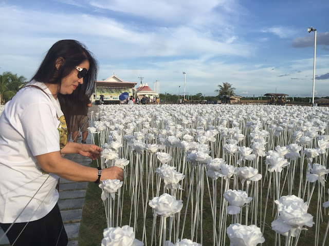 10,000 ROSES IN CORDOVA CEBU