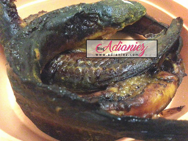 ikan keli panggang air fryer phillips