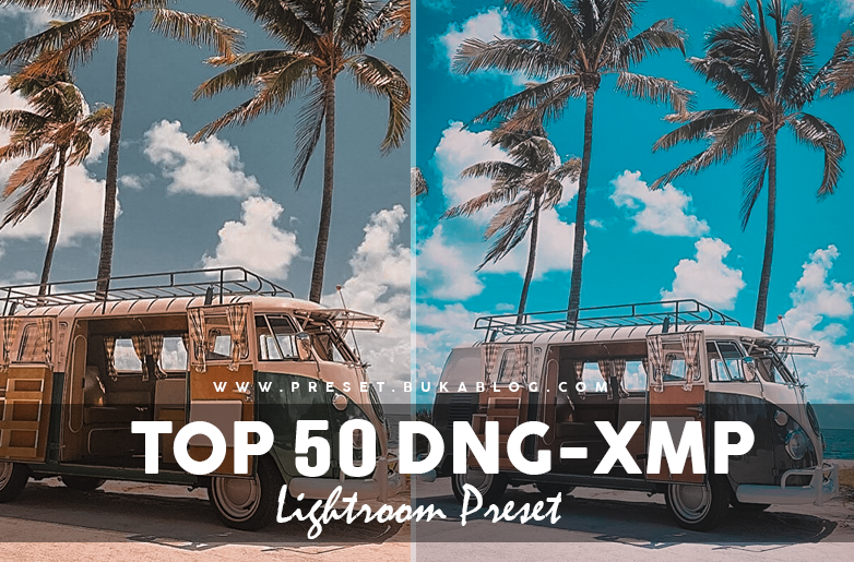 Preview Free 50+ Lightroom Preset Pack XMP & DNG