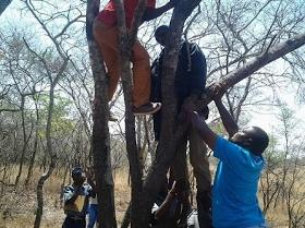 Zimbabwean policeman commits suicide