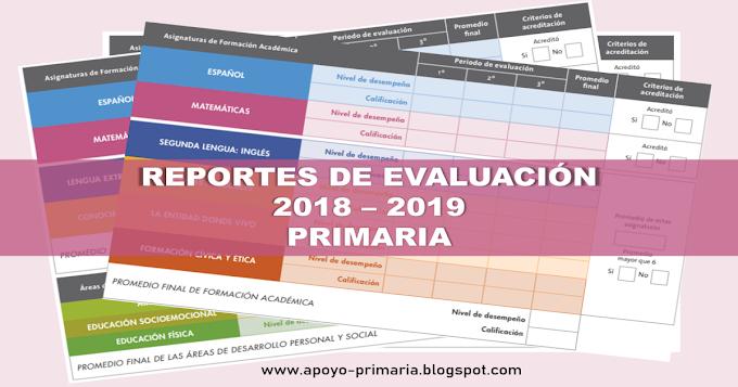Reportes de evaluación  2018 - 2019 (OFICIALES)