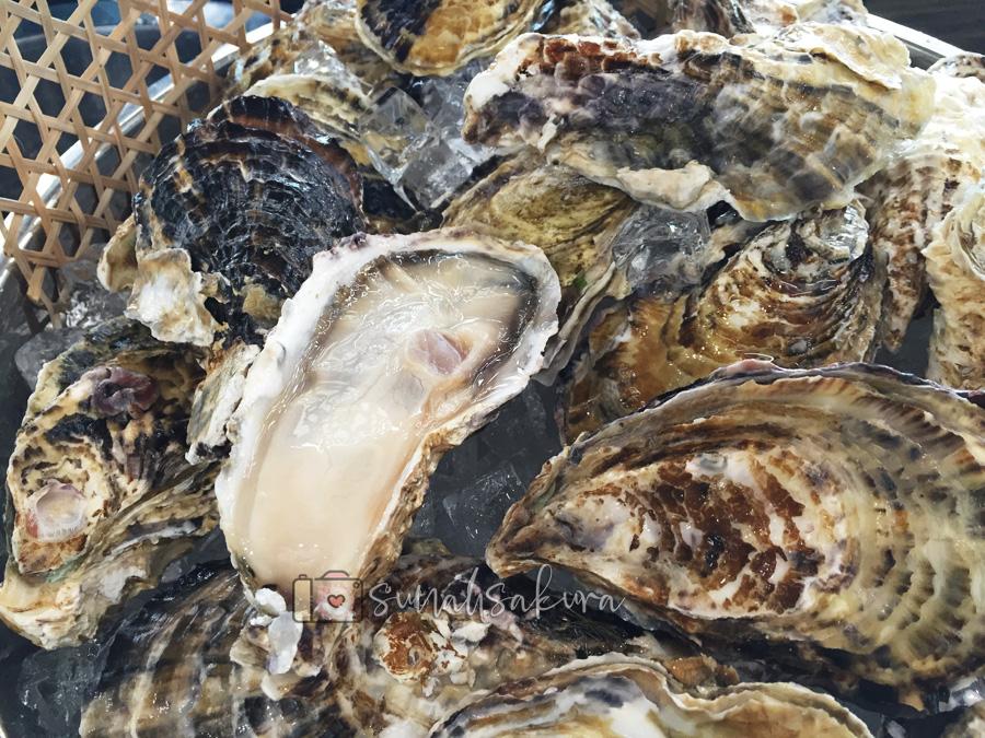 Besar Betul Japanese Oyster Dekat Absolute Hi-Tea, Fraser Place Puteri Harbour!