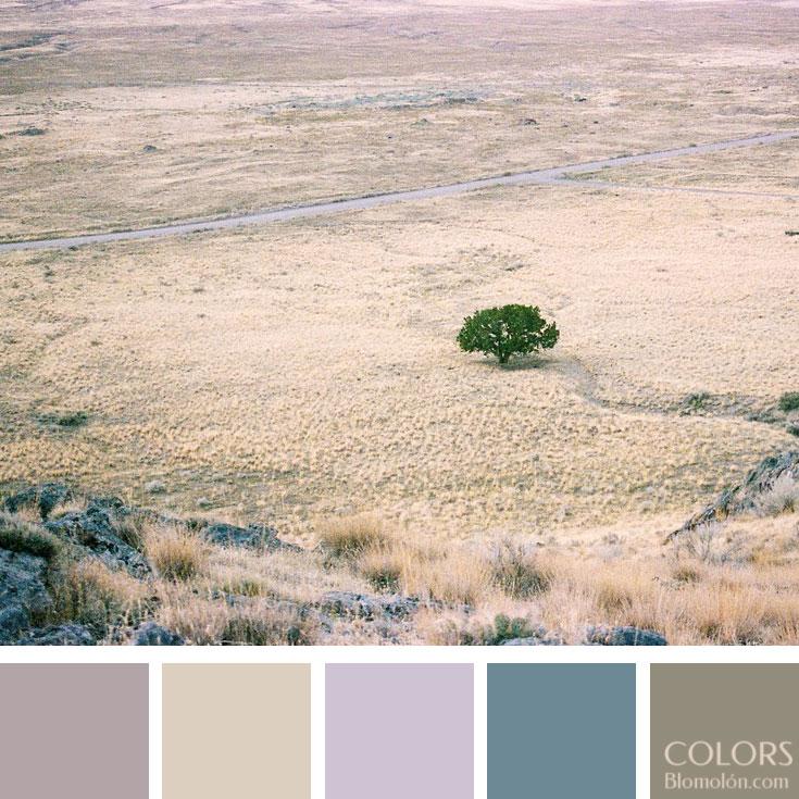 variedad_en_color_paletas_de_colores_100