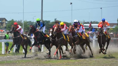 Kuda Aceh, Jatim dan Sumut Bersaing Ditengah Dominasi Sumbar di Final Sawahlunto Derby