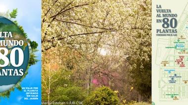 La vuelta al mundo en 80 plantas sin salir del Real Jardín Botánico