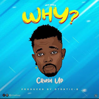 MP3: Crush Up - Why