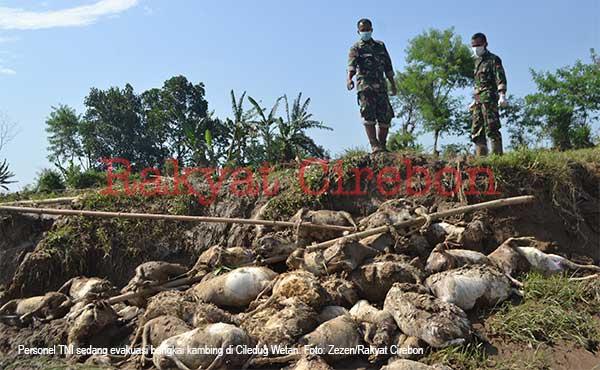 wilayah cildeug kabupaten cirebon kembali diterjang banjir