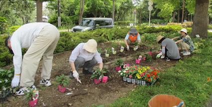 ~四季彩のプロムナードイベント~ 夏花壇を作ろう