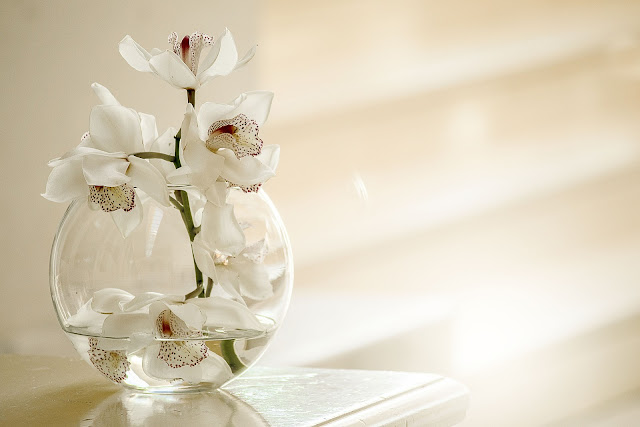 Floating artificial flowers in water