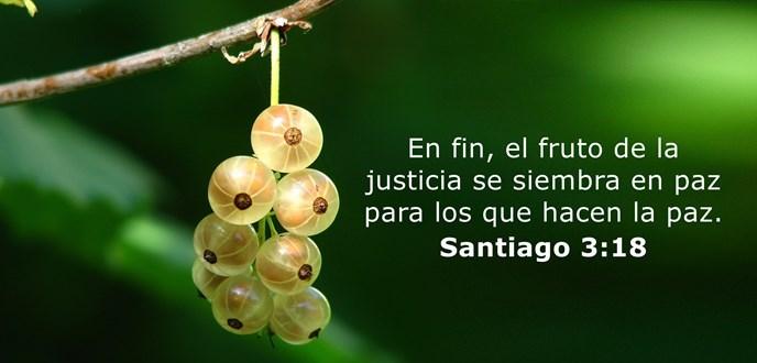 En fin, el fruto de la justicia se siembra en paz para los que hacen la paz.