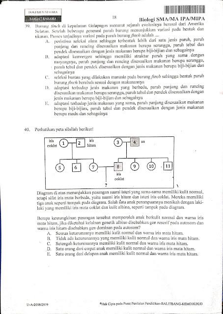 Latihan UNBK BIOLOGI PAPER BASE 2021