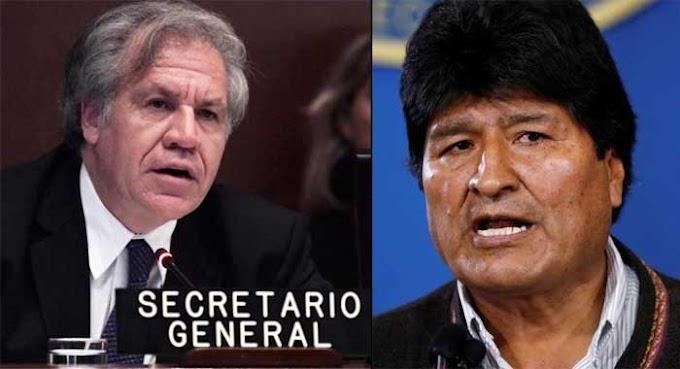 Informe Final OEA: Análisis de Integridad Electoral Elecciones Generales en el Estado Plurinacional de Bolivia 20 de octubre de 2019 (PDF)