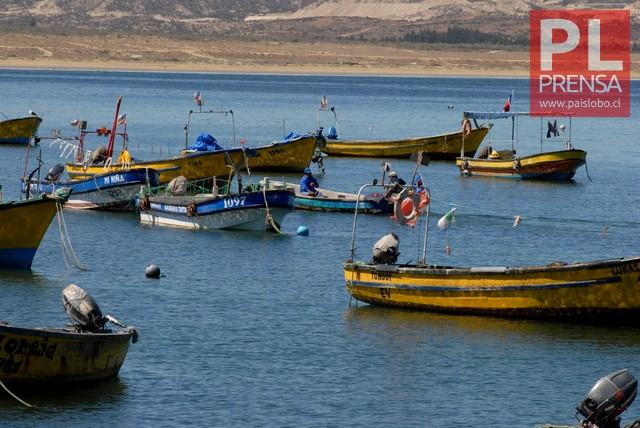 Embarcaciones artesanales