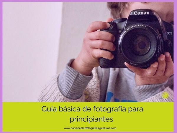 clases-de-fotografía-para-principiantes