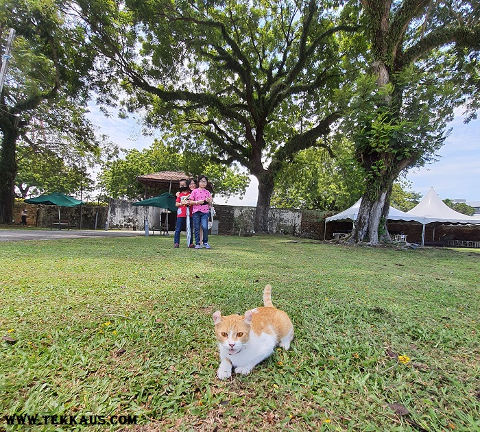 What to do in Fort Cornwallis