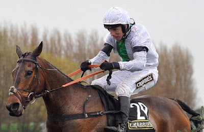 Grand National Winner Pineau de Re