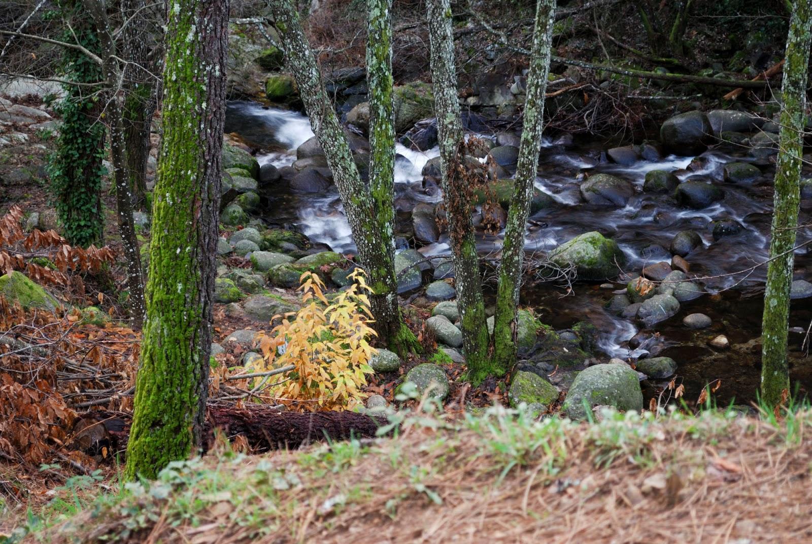 rio pelayos sierra gredos valle tietar avila