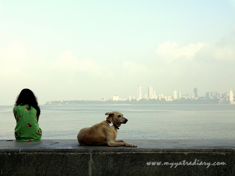 Friends for life - Marine Drive
