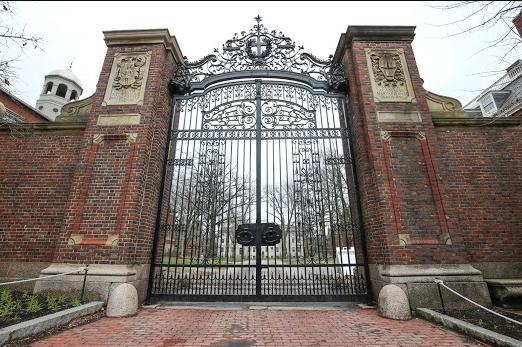 Harvard pseudoscience fraud education dumbing down degradation decapitation