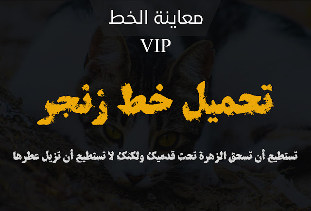 تحميل خط زنجر الاحترافي VIP
