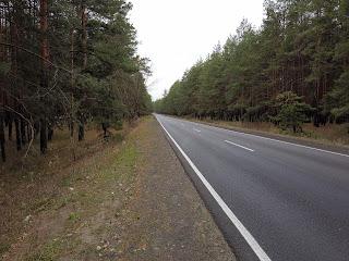 Святогорск. Дорога от железнодорожного вокзала в город