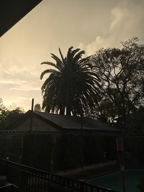Random sun showers in Sydney
