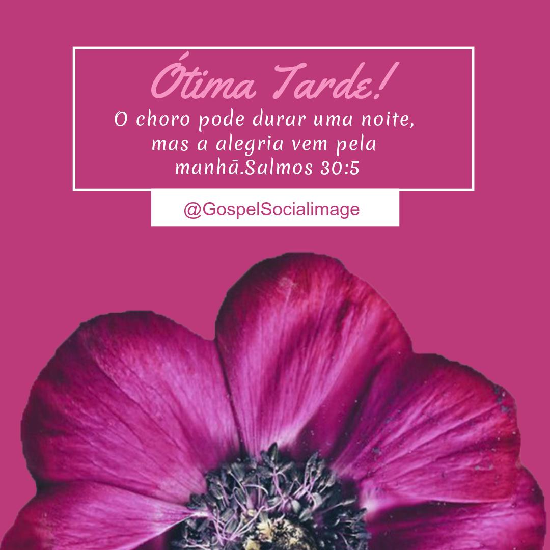 Imagem bíblica para jovens - Salmos 30.5