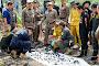 ВБангкоке нашли множество человеческих останков, спрятанных вгородском пруду — Popular Posts