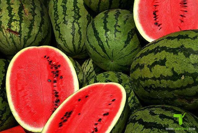 10 Cara Memilih Semangka yang Matang